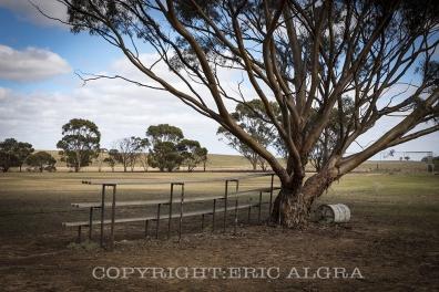 Parrakie, South Australia