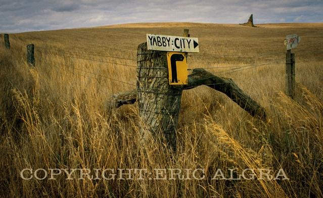 Yabby City